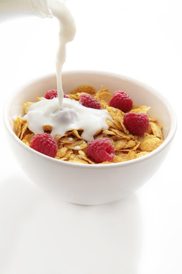 Cornflakes e leite foto de stock royalty free