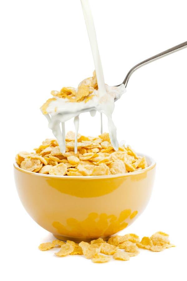 Cornflakes e leite frescos do cereal fotos de stock