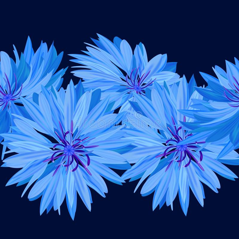 cornflower Blauwe Bloem Textuur, naadloze achtergrond stock illustratie