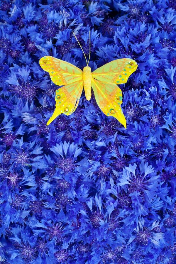 Cornflower blu della sorgente con la farfalla gialla immagini stock