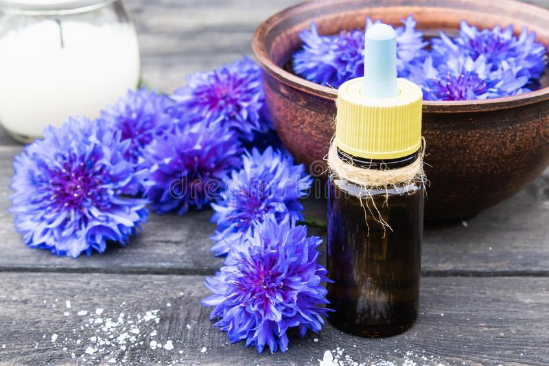 Cornflower essential oil. Cornflower flowers royalty free stock images