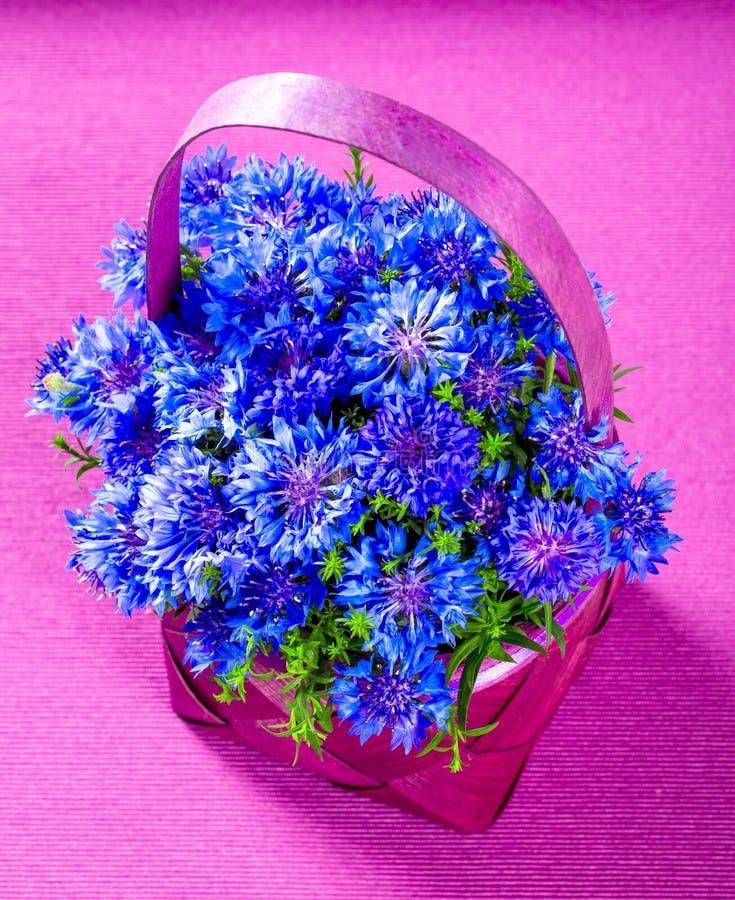 Cornflowers σε ένα καλάθι στοκ εικόνες