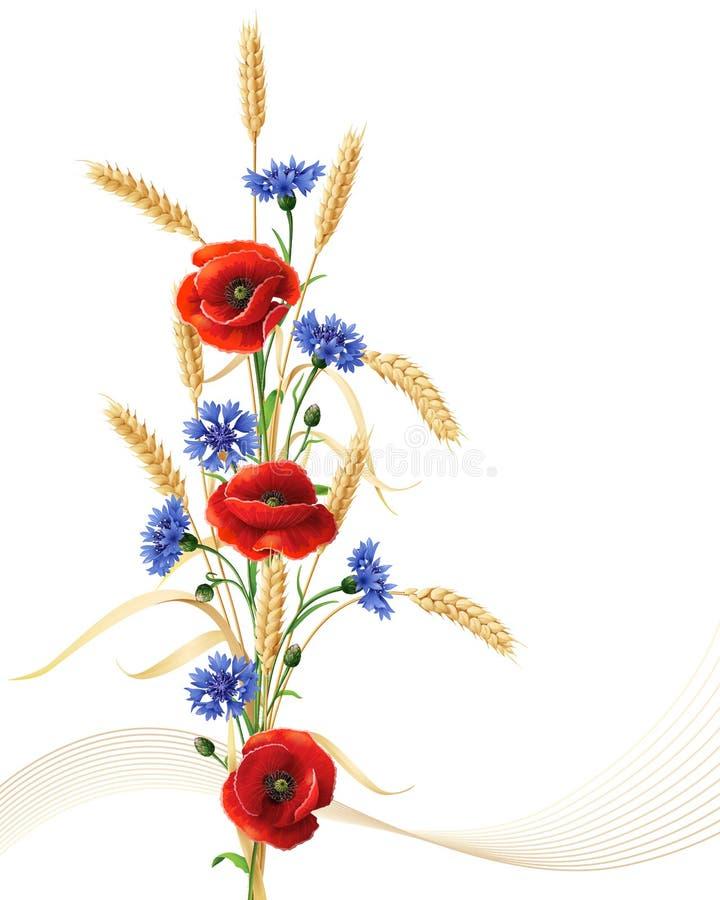 Cornflowers, цветки мака и пук ушей пшеницы бесплатная иллюстрация