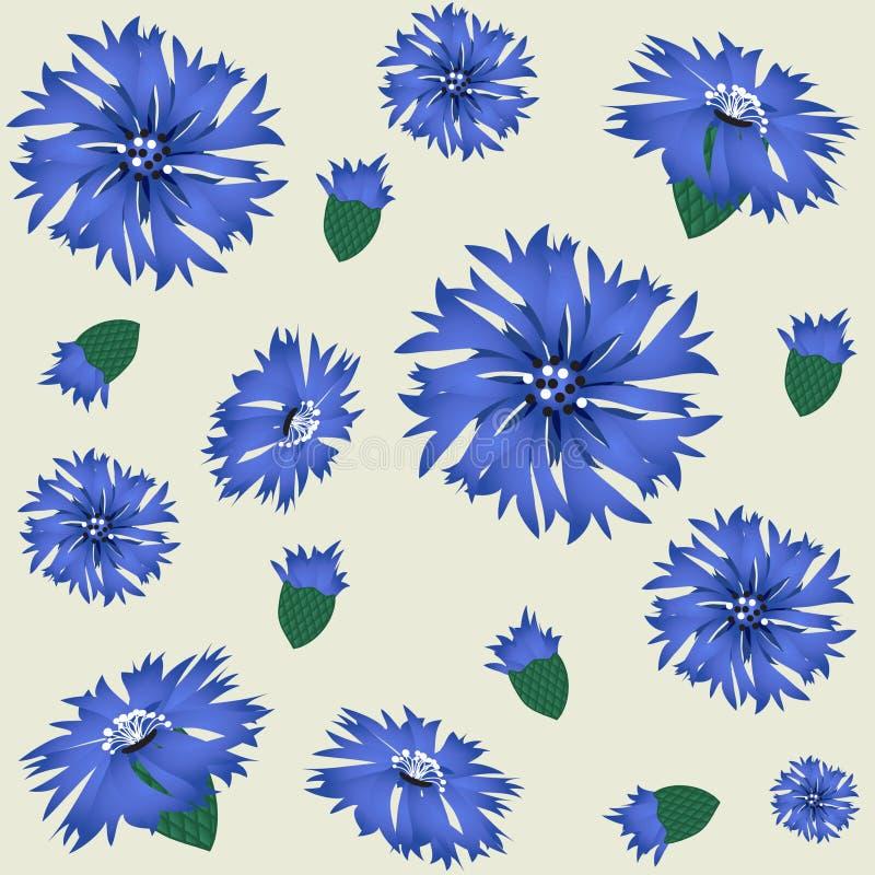Free Cornflowers Stock Images - 15954484