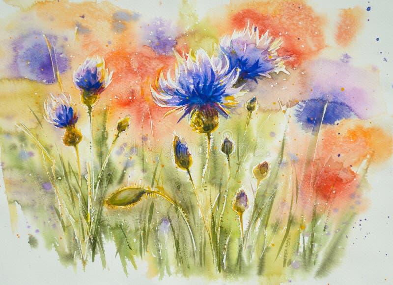 cornflowers libre illustration