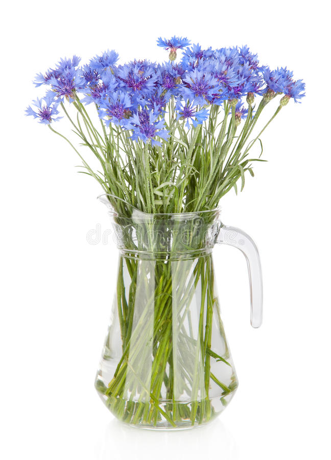 Free Cornflowers Flowers In Vase Stock Images - 29999944
