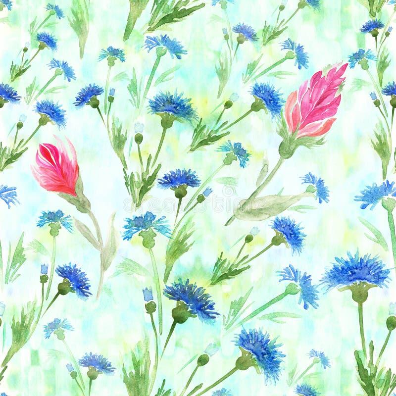 cornflowers Teste padrão sem emenda watercolor wallpaper Use materiais impressos, sinais, cartazes, cartão, packagin ilustração royalty free