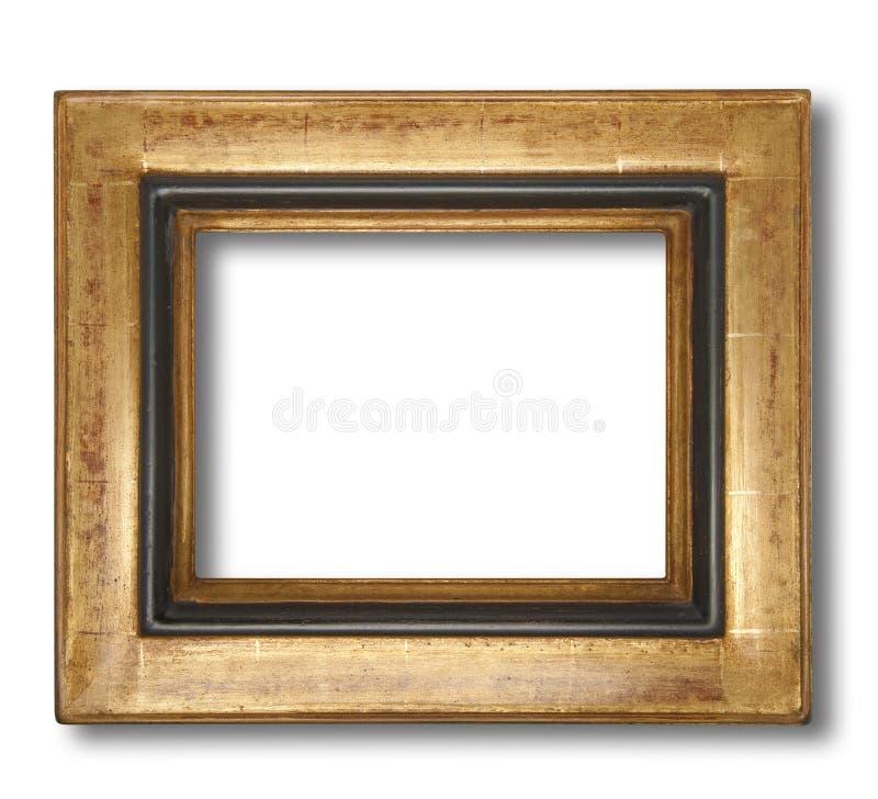 Cornice, isolata fotografia stock