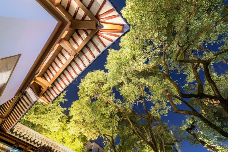 Corniche et branches - nuit de parc de pavillon de Ruzi photos stock