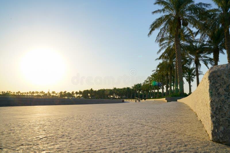 The Corniche, long palm-fringed stone walkway royalty free stock photography