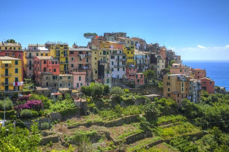 Corniglia, Cinque - Terre, Włochy obrazy royalty free