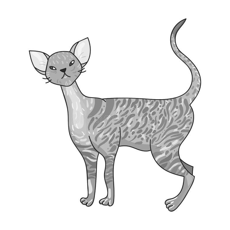 Cornish εικονίδιο Rex στο μονοχρωματικό ύφος που απομονώνεται στο άσπρο υπόβαθρο Διανυσματική απεικόνιση αποθεμάτων συμβόλων φυλώ απεικόνιση αποθεμάτων