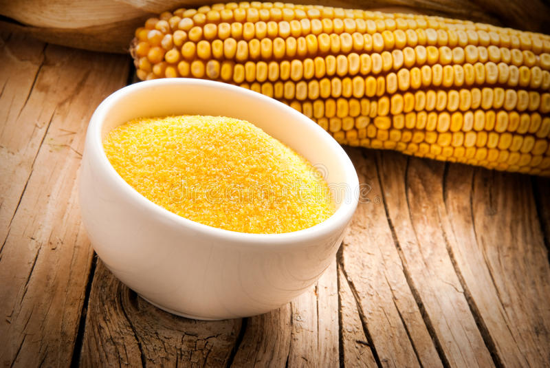 Cornmeal and dry maize. Cornmeal in bowl with dry maize seeds on wooden background stock image