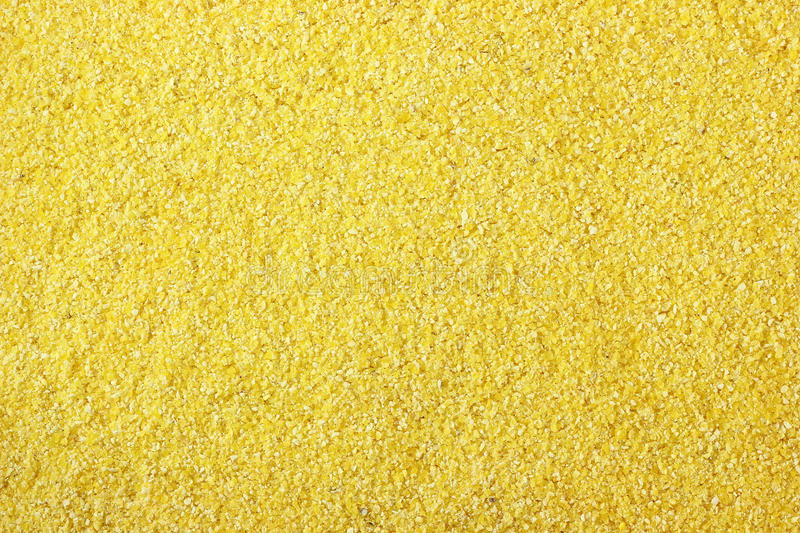 Cornmeal. ( flour made from dried maize stock photos