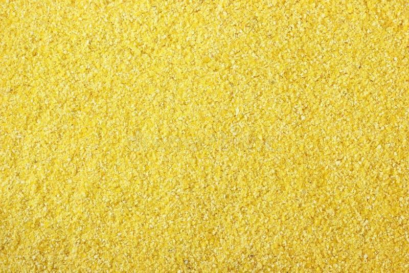 Cornmeal arkivfoton