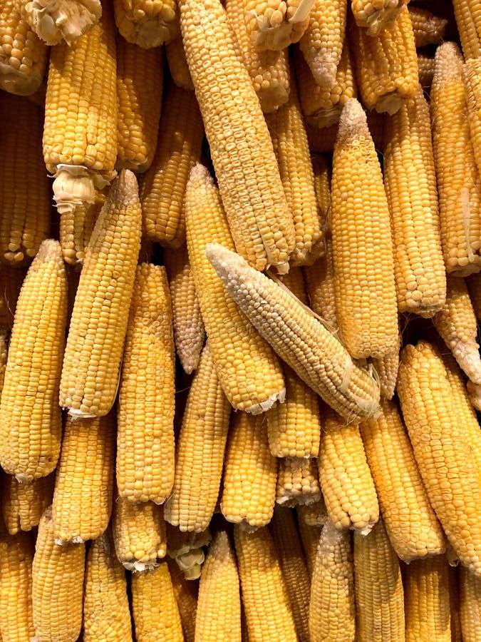 corns Natürliches Gemüse, natürliche Vitamine lizenzfreie stockfotos