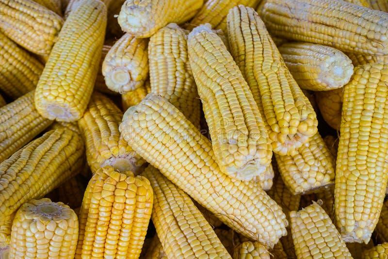 Corns. Yellow corns at the street market royalty free stock photo