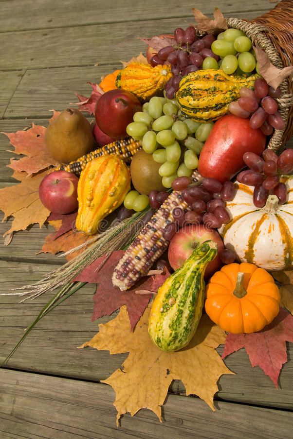 Cornucopia with fall harvest royalty free stock photo
