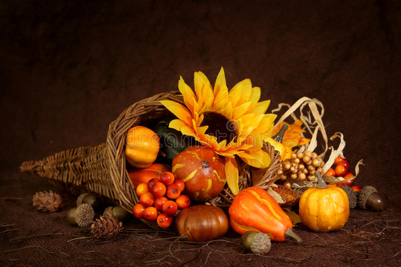 Download Cornucopia with pumpkins stock photo. Image of still - 15489484