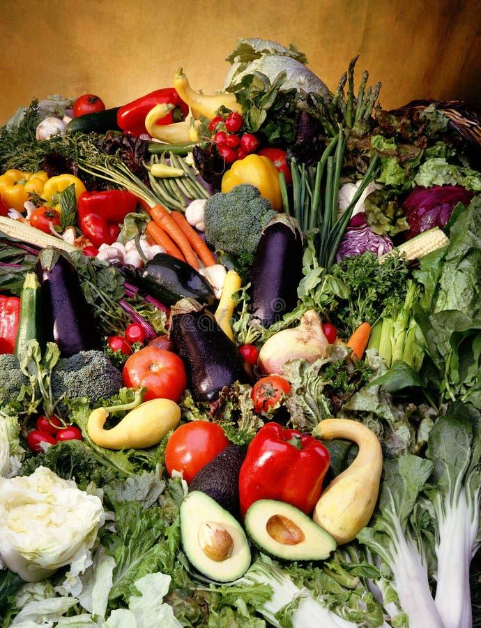 Cornucopia of vegetables stock photography