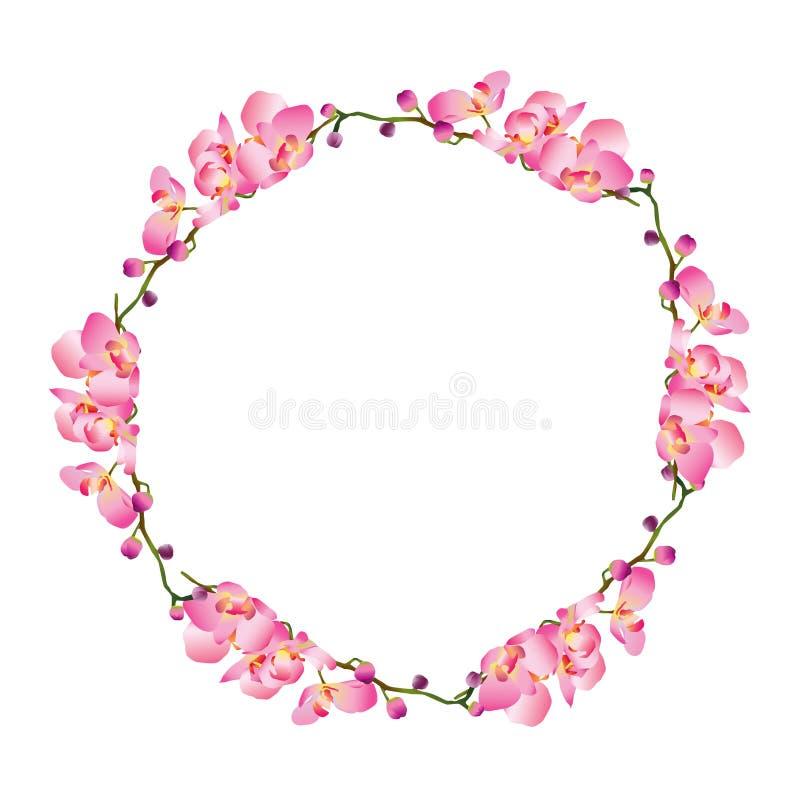 Coroa da flor da orquídea, círculo floral, projeto simples para o convite do casamento e beira ilustração royalty free