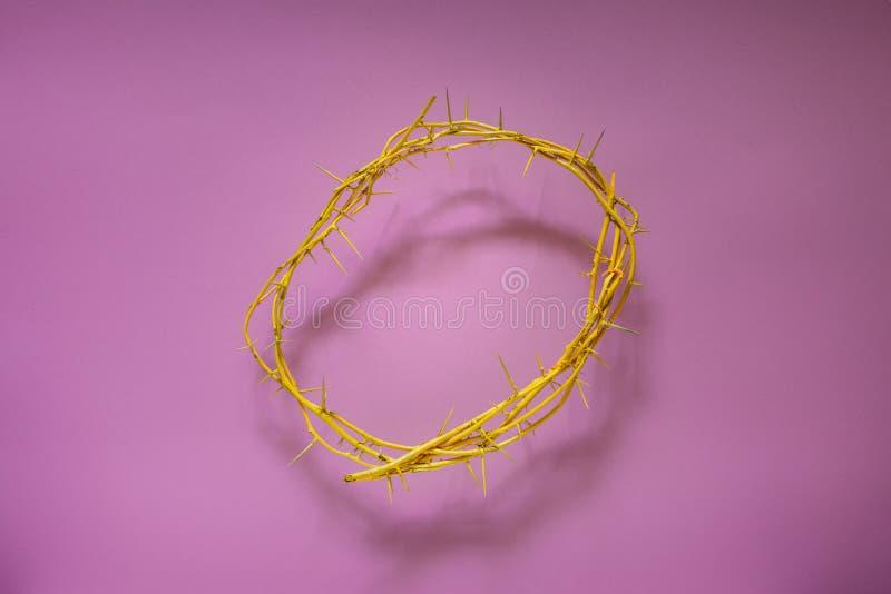Coroa de espinhos amarela em um fundo lilás, vista superior imagens de stock