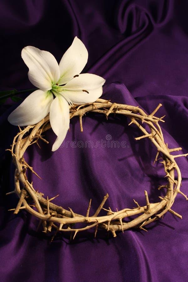 Coroa de espinhos com lírio foto de stock royalty free