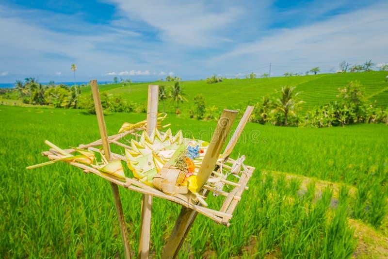 Coroa feita das folhas sobre um apoio de madeira em fileds de um arroz, Ubud, Bali, Indonésia foto de stock royalty free