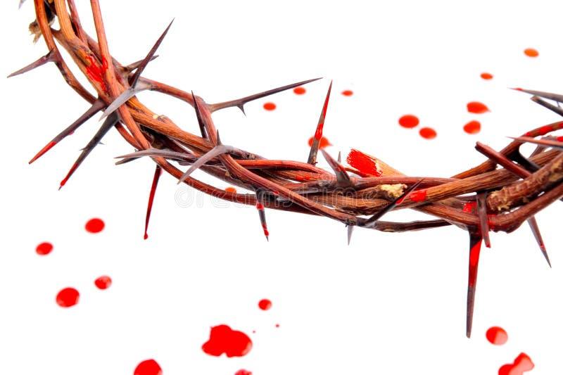 Coroa feita dos espinhos e das gotas do sangue foto de stock