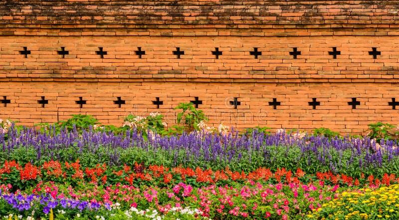 Corolful-Garten mit Blumen nähern sich alter Wand des roten Backsteins lizenzfreie stockfotos