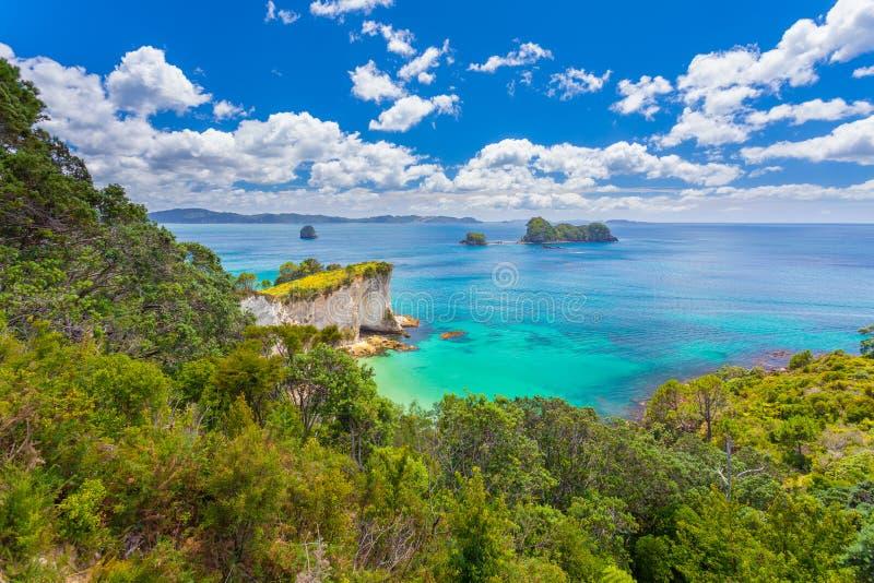 Coromandel półwysep na Północnej wyspie Nowa Zelandia fotografia royalty free