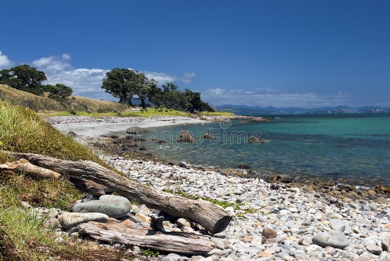 Coromandel peninsular, Firth Thames, Nowa Zelandia obraz royalty free