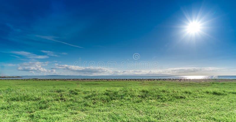 Coromandel-Strand an einem sonnigen Tag stockbild