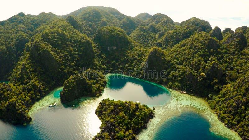 Coron, Palawan, Filippinerna, flyg- sikt av den härliga tvilling- lagun och kalkstenklippor Fisheye sikt royaltyfri foto
