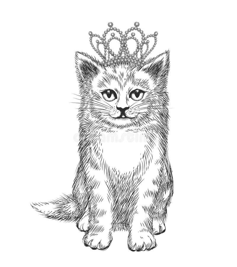 Corona d'uso del piccolo gattino illustrazione di stock