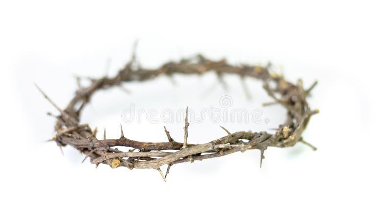 Corona de espinas. imagen de archivo libre de regalías
