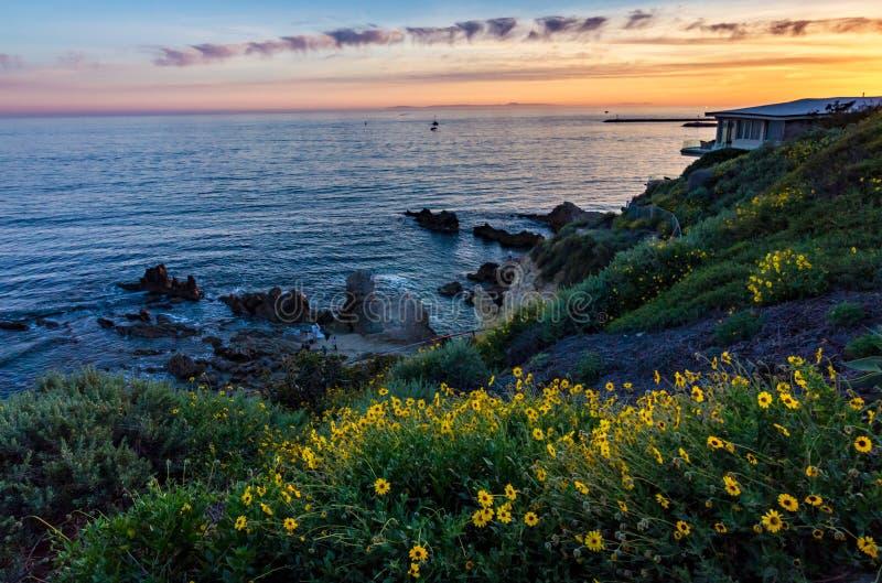 Corona Del Mar Super Bloom fotos de stock