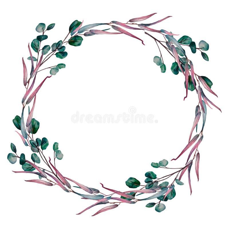 Corona dell'acquerello dei rami differenti dell'eucalyptus royalty illustrazione gratis
