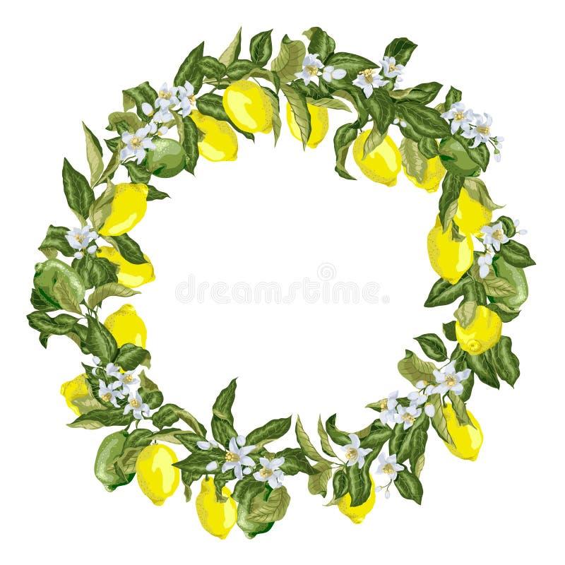 Corona dell'agrume nel grafico di vettore con i fiori ed il ramo di fioritura illustrazione vettoriale