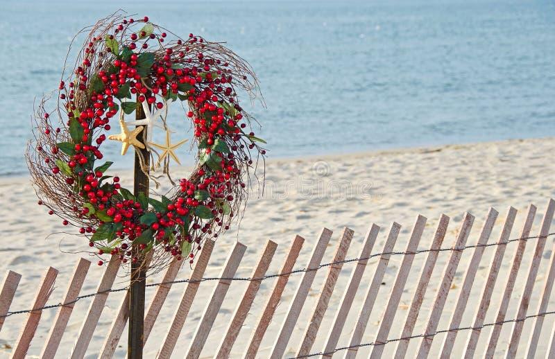 Corona della bacca di Natale con le stelle marine fotografia stock libera da diritti