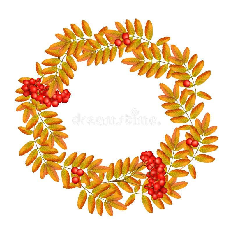 Corona di autunno con la sorba, le foglie e ashberry isolati su fondo bianco Bella cartolina d'auguri con una corona di illustrazione di stock
