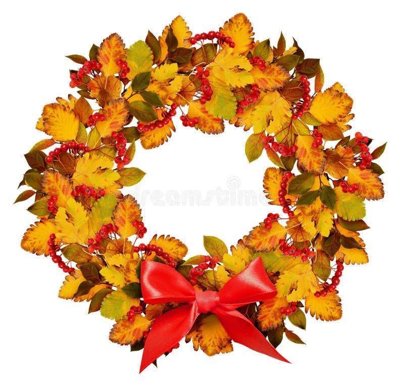 Corona di autunno dalle foglie e dalle bacche di sorbo colorate asciutte con rosso fotografia stock libera da diritti