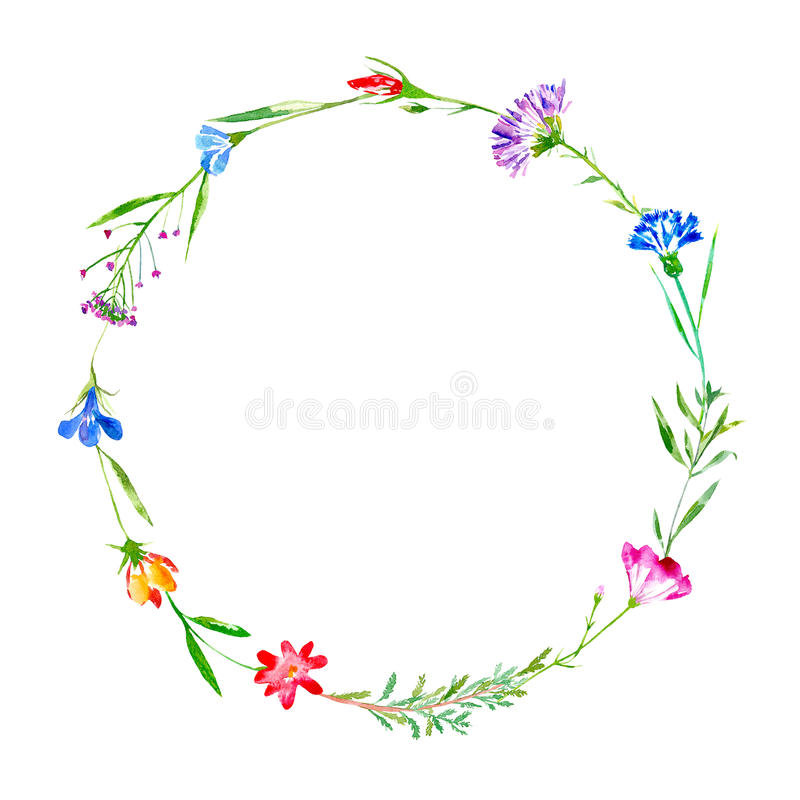 Corona di un fiordaliso, campanula, erbe, tanaceto, erica floreale royalty illustrazione gratis
