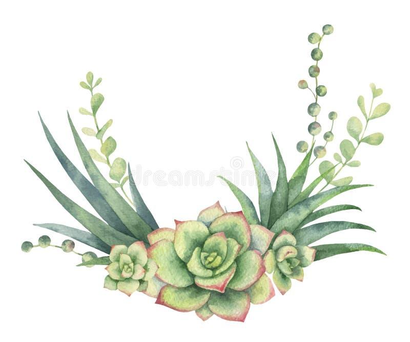 Corona di vettore dell'acquerello dei cactus e della crassulacee isolati su fondo bianco royalty illustrazione gratis