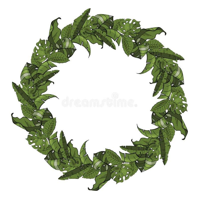 Corona disegnata a mano delle foglie tropicali Piante, foglie esotiche Fondo bianco isolato Invito o progettazione di carta Vetto illustrazione vettoriale