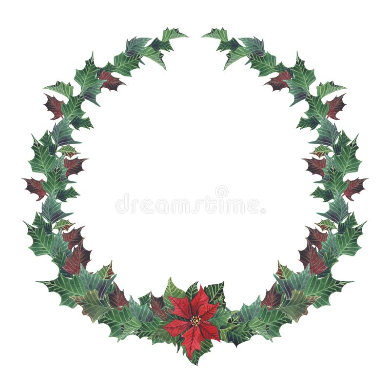 Corona floreale di Natale dell'acquerello con la stella di Natale Rami dipinti a mano dell'abete e dello snowberry, bacche rosse  illustrazione vettoriale
