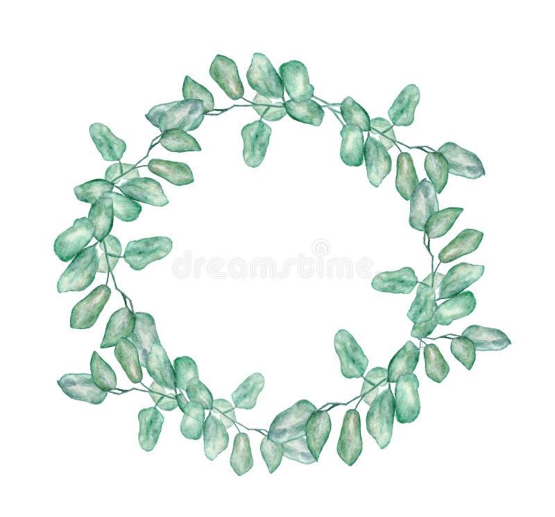 Corona rotonda dell'acquerello con l'eucalyptus del dollaro d'argento illustrazione vettoriale