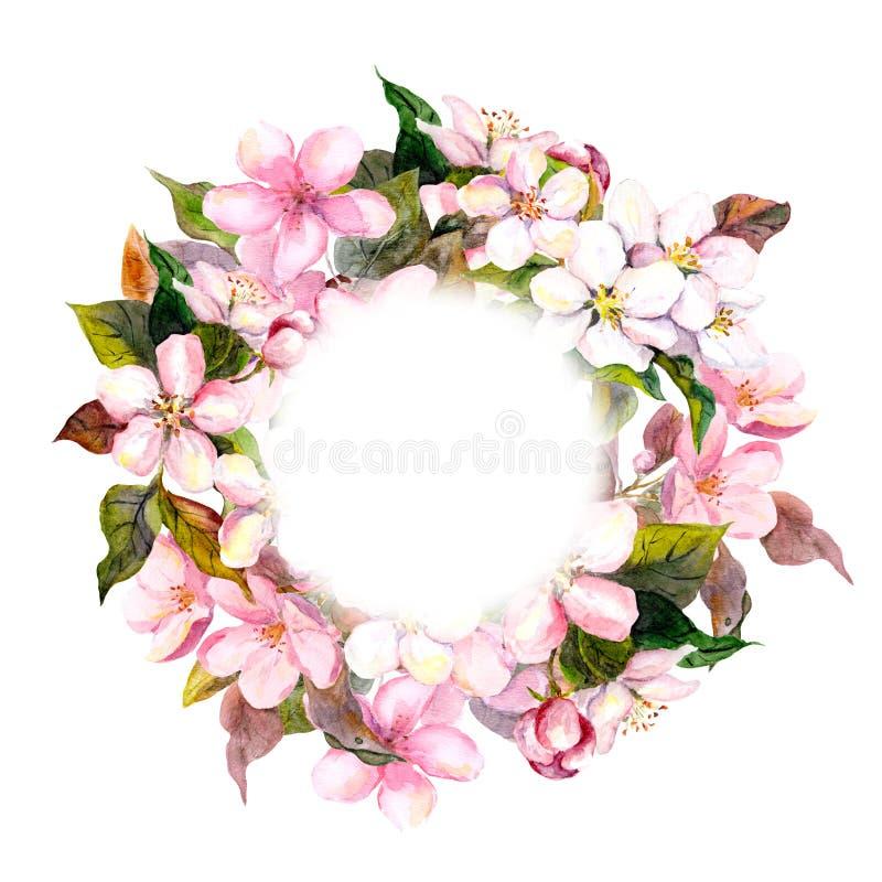 Corona rotonda floreale con i fiori rosa - mela, fiore di ciliegia per la cartolina watercolor illustrazione vettoriale