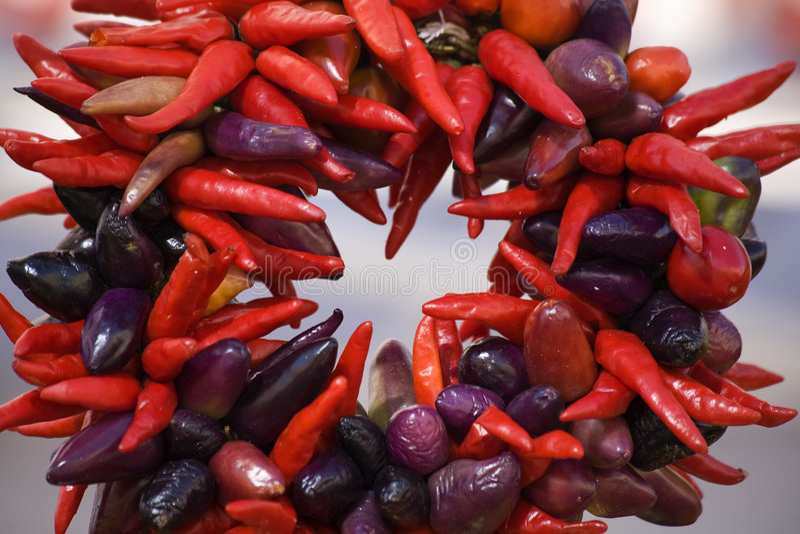 Corona viola rossa rotonda dei peperoni di peperoncino rosso fotografie stock libere da diritti