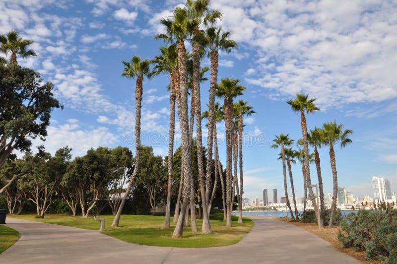 Coronado Island in San Diego, California. Palm Trees at Coronado Island in San Diego, California royalty free stock photography